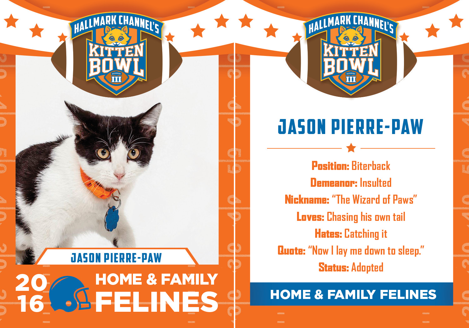 kitten bowl iii preview check out this year 39 s furry players. Black Bedroom Furniture Sets. Home Design Ideas